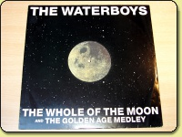 The Waterboys - The Whole Of The Moon