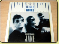 The Icicle Works - Understanding Jane