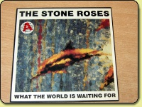 Stone Roses - What The World Is Waiting For